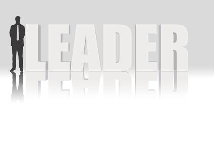 Nonprofit executive leadership training activities