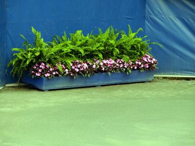C mo construir macetas grandes para exteriores ehow en for Que plantas poner en una jardinera