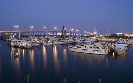 Hotels with a free shuttle to the port of miami the for Miami pet friendly hotels