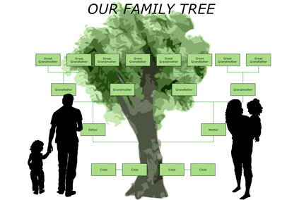 How to Create a Family Tree on Microsoft