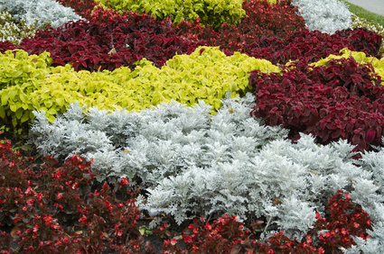 Examples of low maintenance part shade flower beds ehow uk for No maintenance flower bed