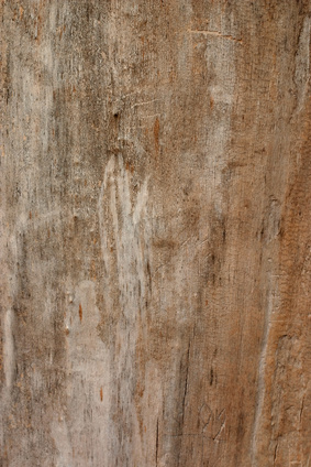 How To Clean Unsealed Hardwood Floors Ehow Uk