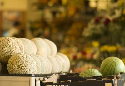 How Much Should a Family of Four Budget for Groceries?