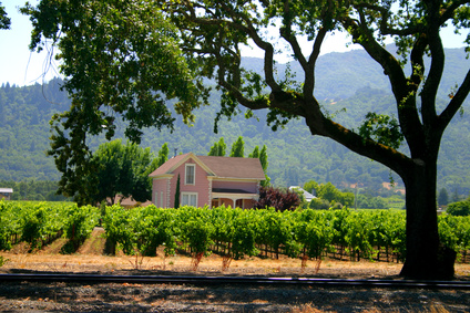 Wine country rv parks in california usa today for Best time to visit napa valley wine country