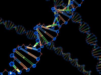 What Do Nucleic Acids Do? | Healthy Eating | SF Gate