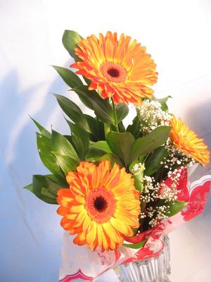 how to keep flowers alive in a vase garden guides. Black Bedroom Furniture Sets. Home Design Ideas