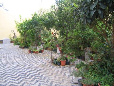 C mo acomodar antorchas estilo tiki en el jard n trasero for Antorchas para jardin