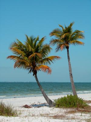Florida Panhandle Campgrounds Usa Today