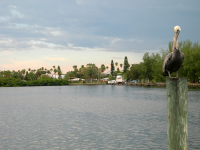 Bluff Springs Florida Area Hotels Usa Today
