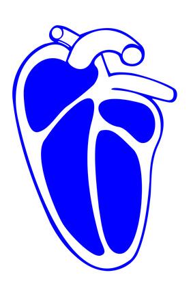 بیماری ایسکمیک قلبی