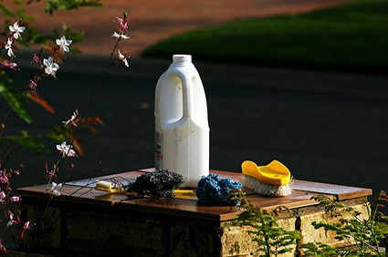 Does Hydrogen Peroxide Kill Bacteria?