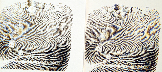 How to Become a Latent Fingerprint Examiner   Career Trend