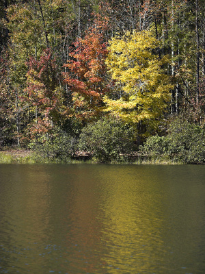 Greenville sc rv parks usa today for Fishing in greenville sc