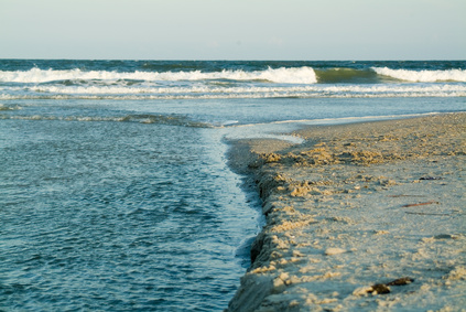 Pet Friendly Hotels In North Topsail Beach Nc