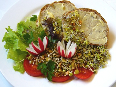 High Protein Raw Foods