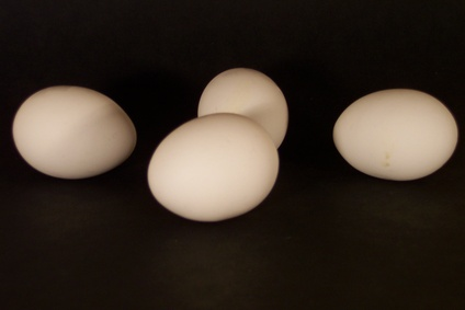 Can You Eat Hard-Boiled Eggs Even Though the Shells Are Cracked?