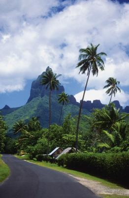 Hiking In French Polynesia Usa Today