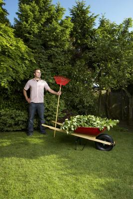 How early is it ok to mow your lawn home guides sf gate for How often should you mow your lawn