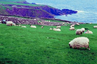 AllInclusive Ireland Vacations USA Today - All inclusive ireland