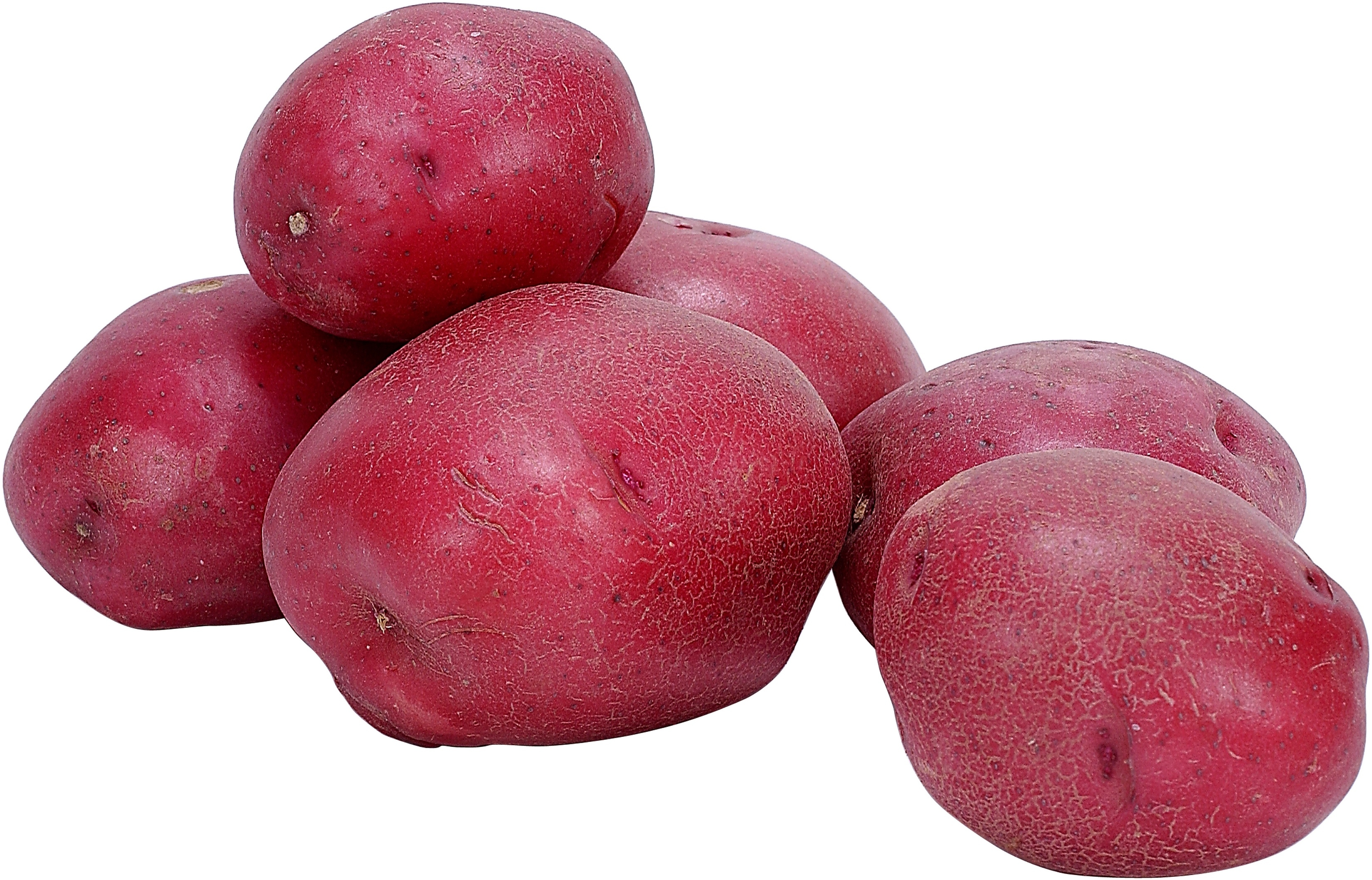 Salt potatoes are typically prepared from either red or white potatoes.