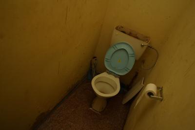 Kohler Toilet Plunger