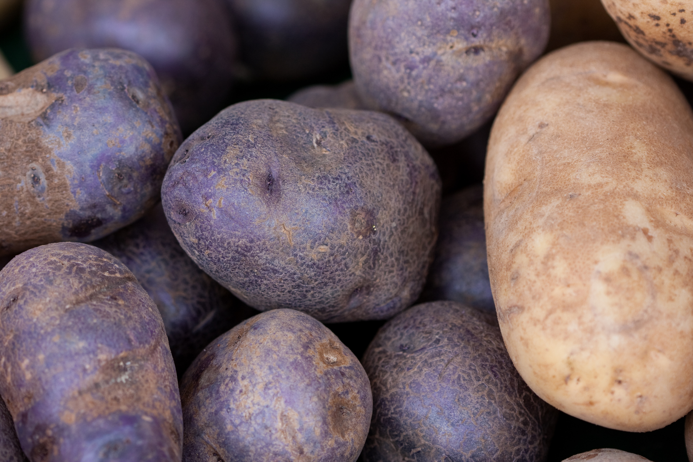 Are Potato Skins Healthy?   LEAFtv