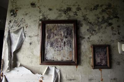 How To Kill Mold Growing On Paint Home Guides Sf Gate