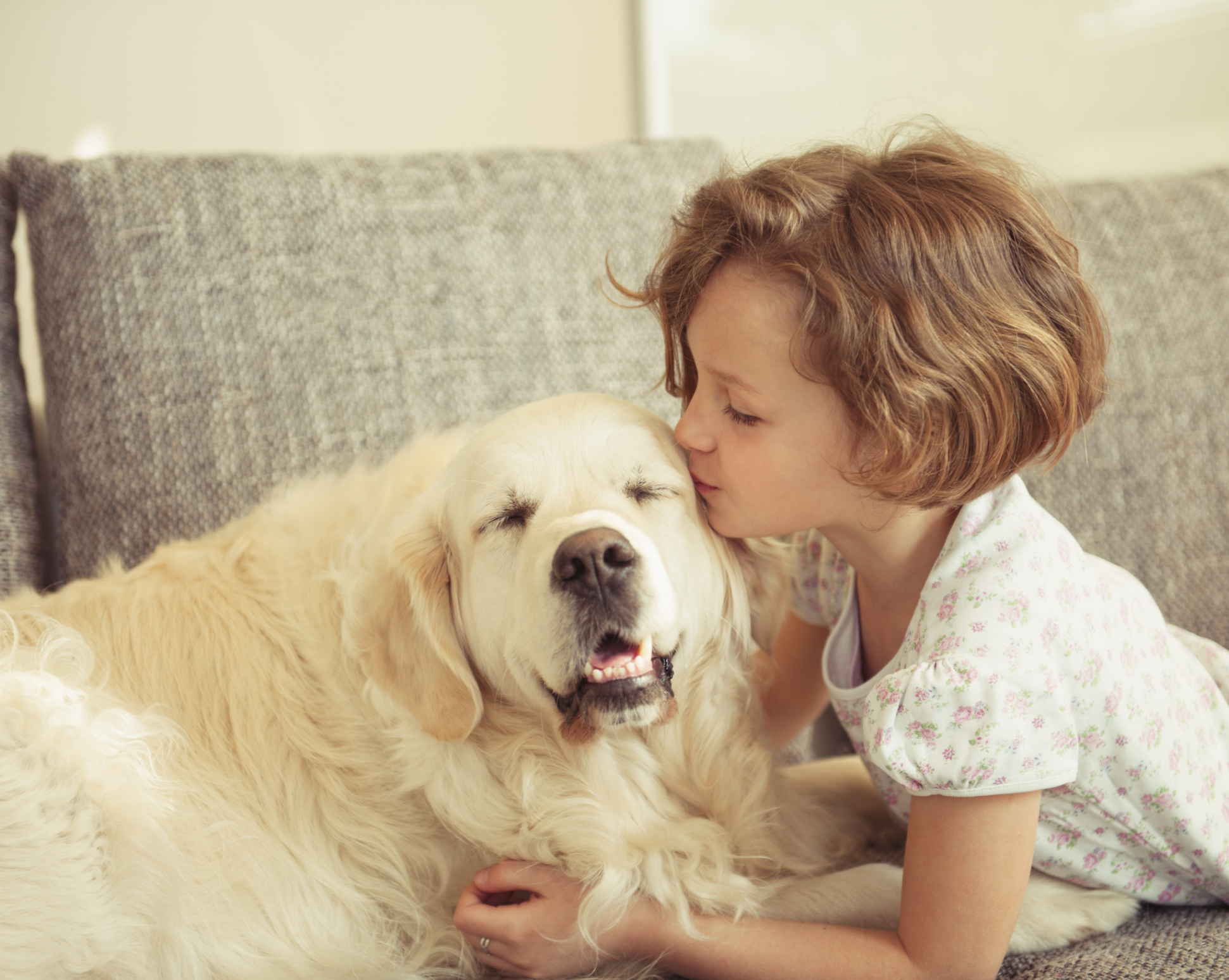 Harmful Side Effects of Frontline to Dogs & Humans | Cuteness