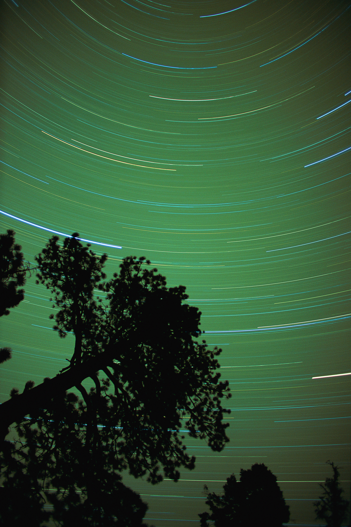 How to Locate Orion's Belt