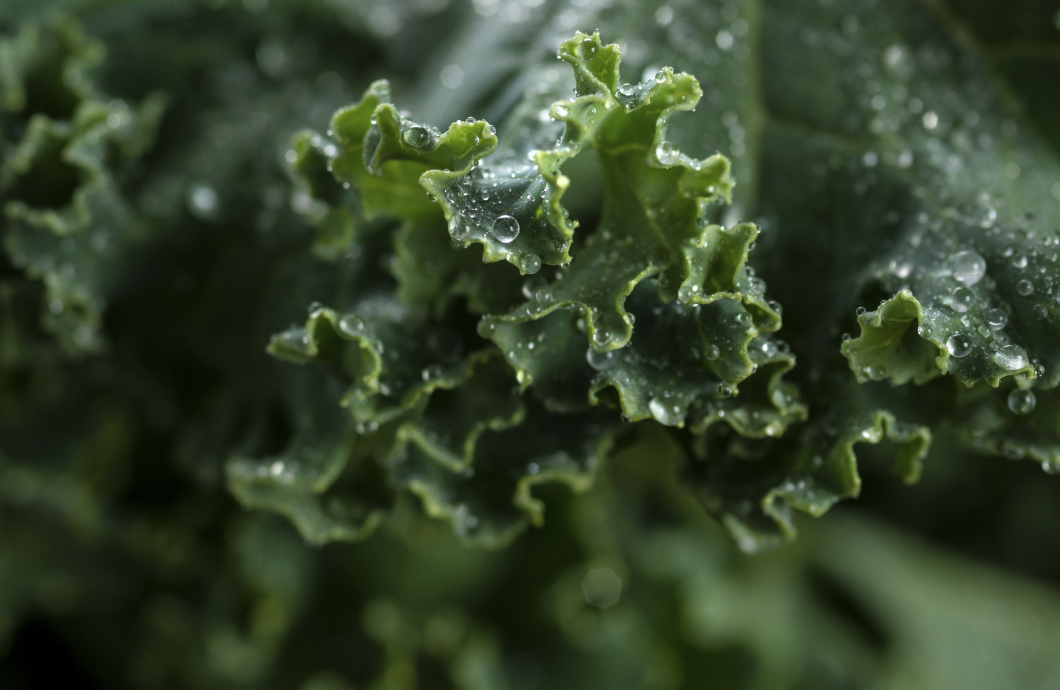 How much kale should i eat per week