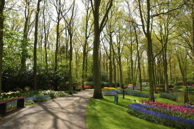Qualifications of a landscape designer for Garden design qualifications