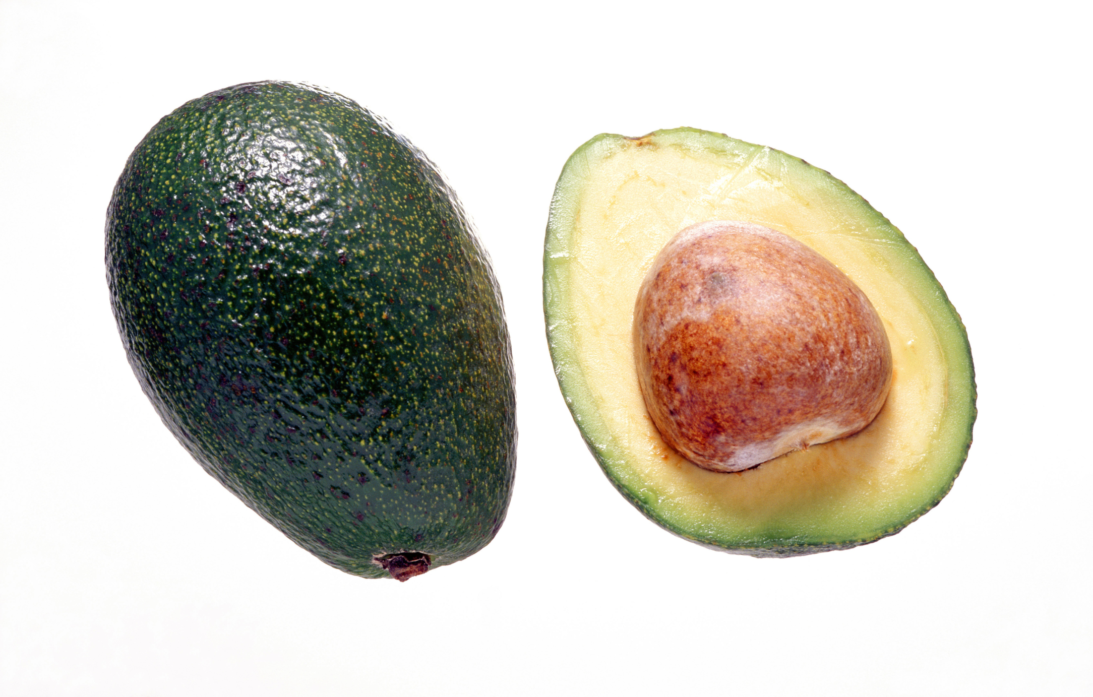 how long does it take an avocado pit plant to grow home guides sf gate. Black Bedroom Furniture Sets. Home Design Ideas
