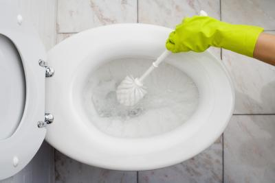 how to remove build up in sbend of toilet bowl