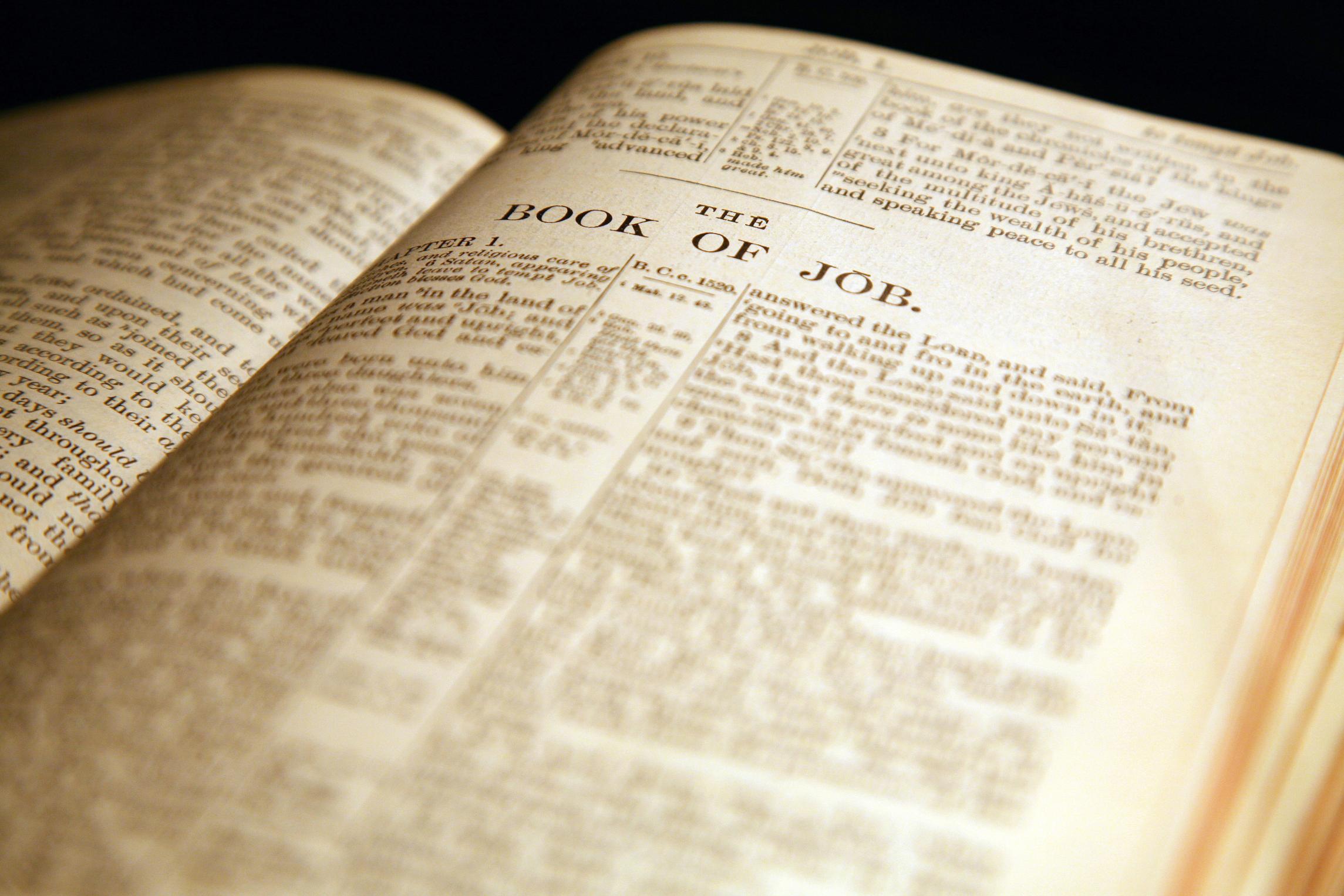 Como Hacer Una Manualidad De La Historia De La Biblia De Zaqueo