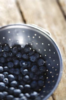 What Type Of Fertilizer To Use On Blueberry Bushes Home