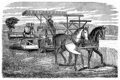 a history of apples in the agriculture of north america Early developments in the american dairy industry and agricultural scientist north was a leader in gaining significant to the history of agriculture.