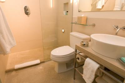how to eliminate mold from a shower pan home guides sf gate. Black Bedroom Furniture Sets. Home Design Ideas