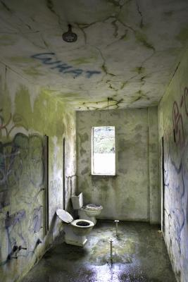 how to fix toilet flush uk
