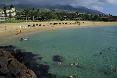 Hawaiian Hotels With A Swim Up Bar Usa Today