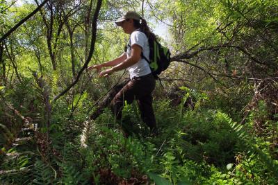 Wildlife Biology universities courses
