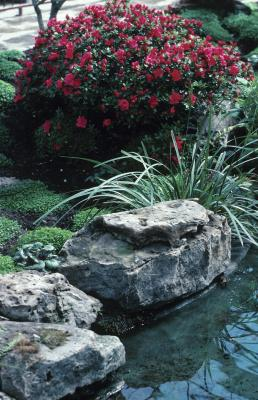 Types Of Landscaping Flower Bed Rocks Home Guides Sf Gate