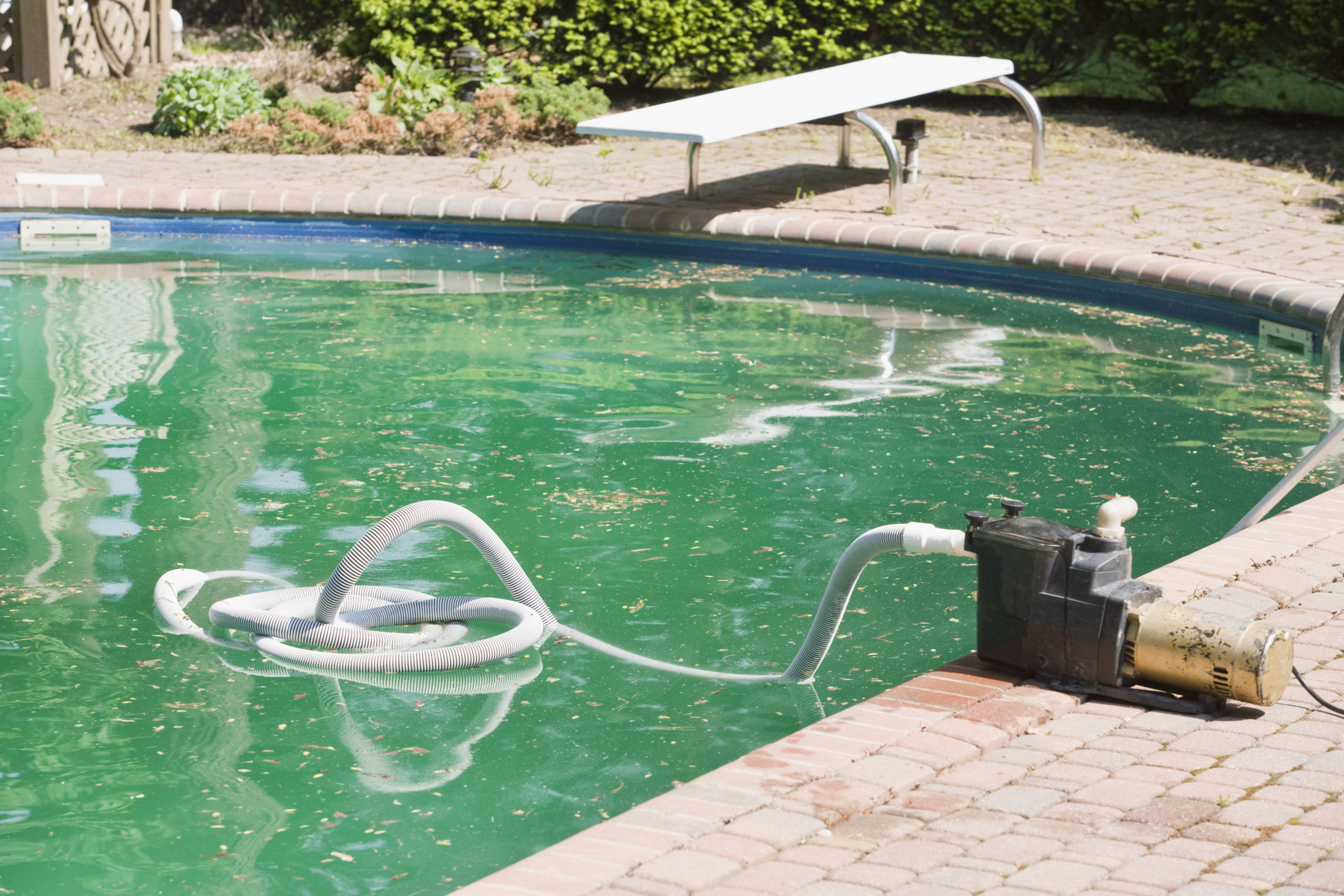 Home Remedy for Cloudy Pool Water | Hunker