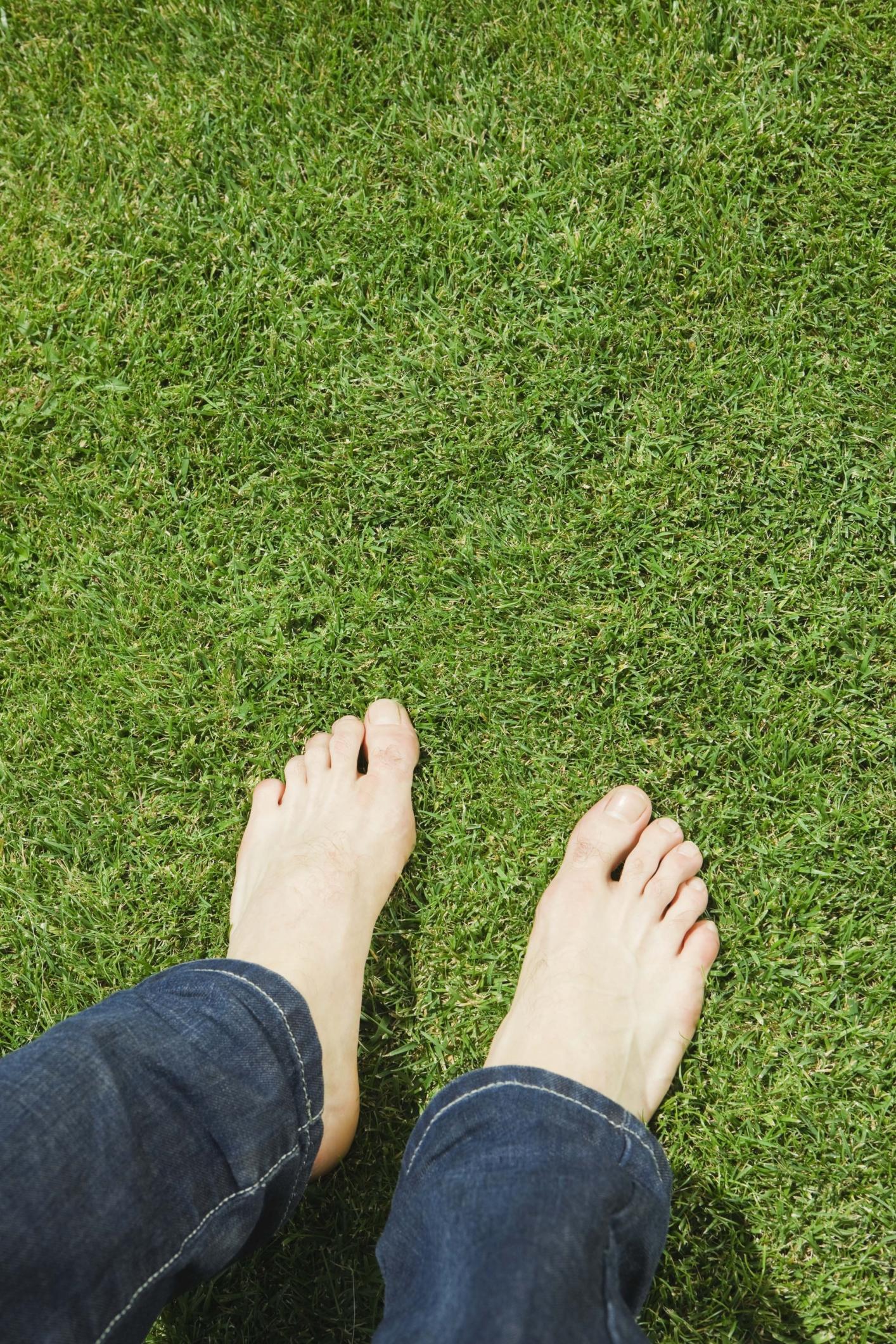 Natural Way To Kill Grass Fungus