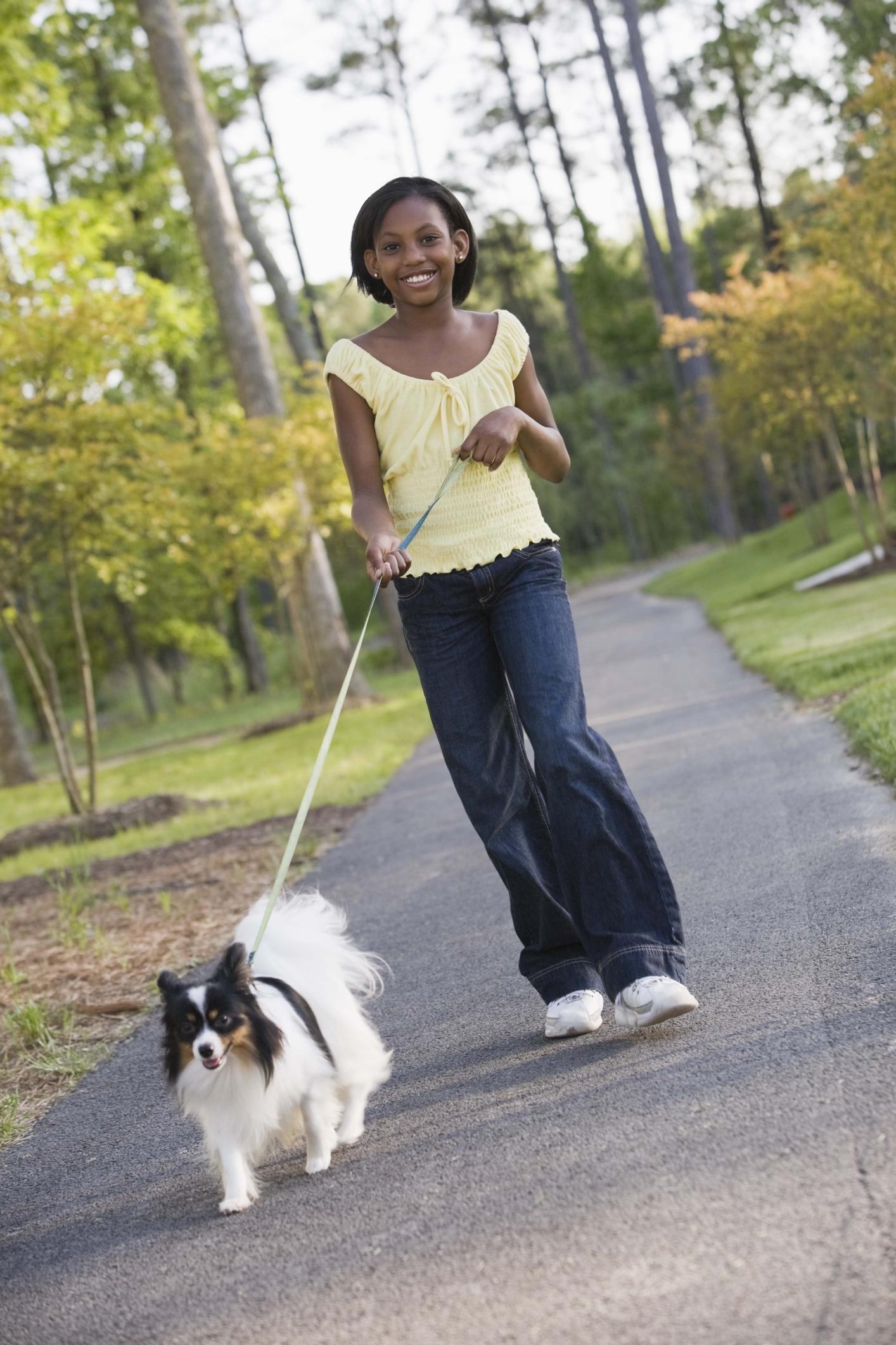 Dog Grooming Jobs For Teens Work Chron Com