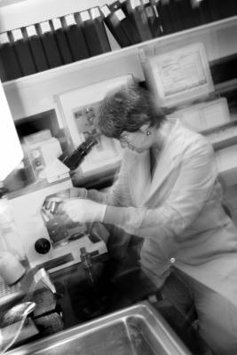 Csi laboratory analysis