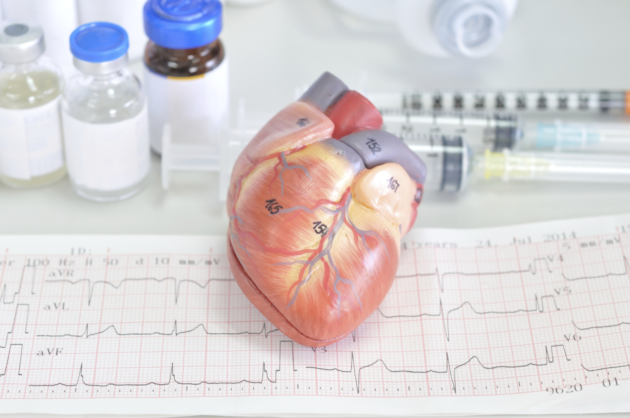 The 4 Parts Of The Cardiovascular System Livestrong