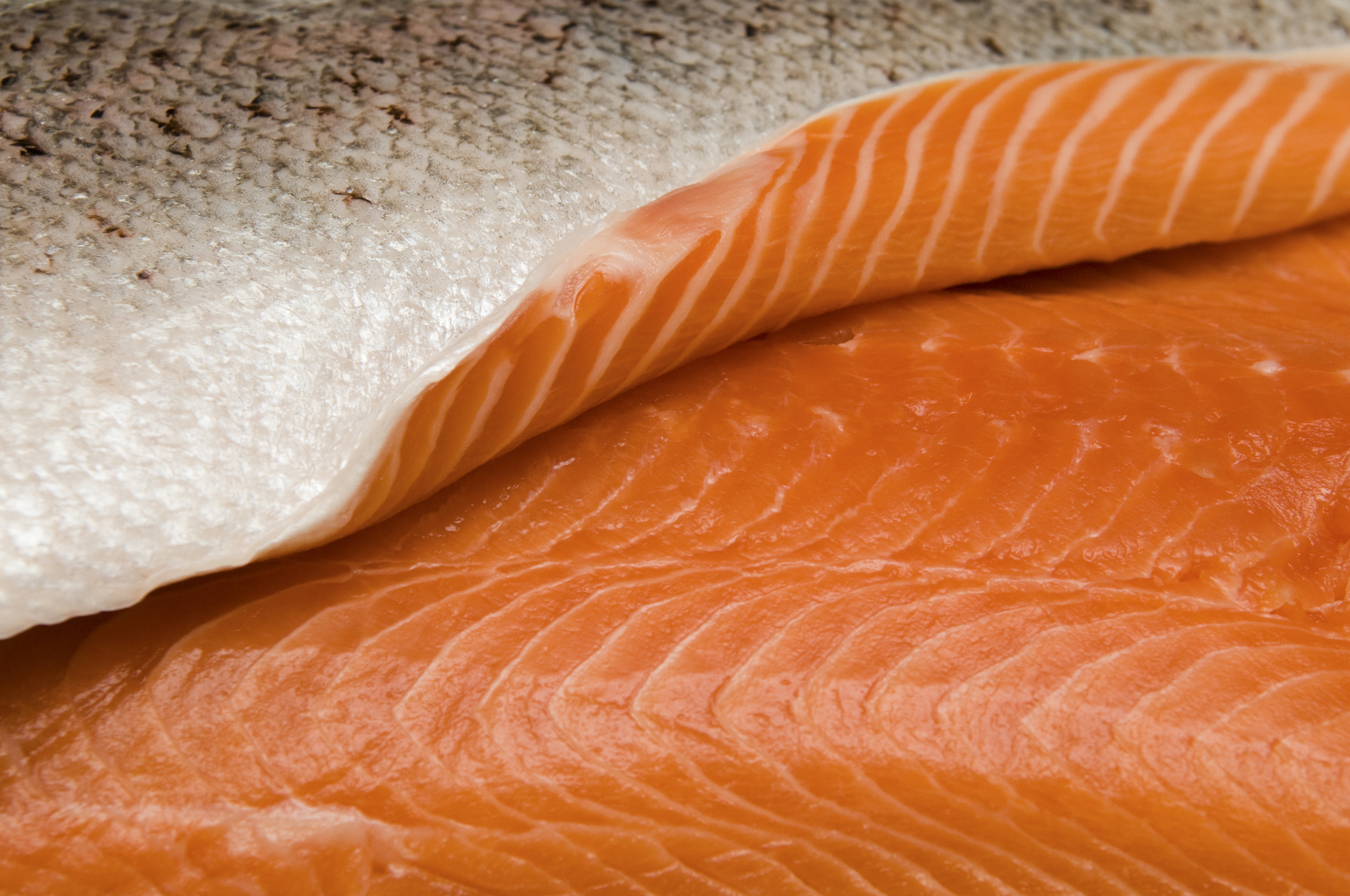 Nutritional Value Of Keta Salmon Vs Sockeye Salmon Livestrong