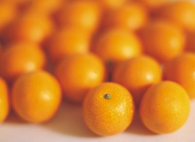 Mandarin Orange Fluff Dessert