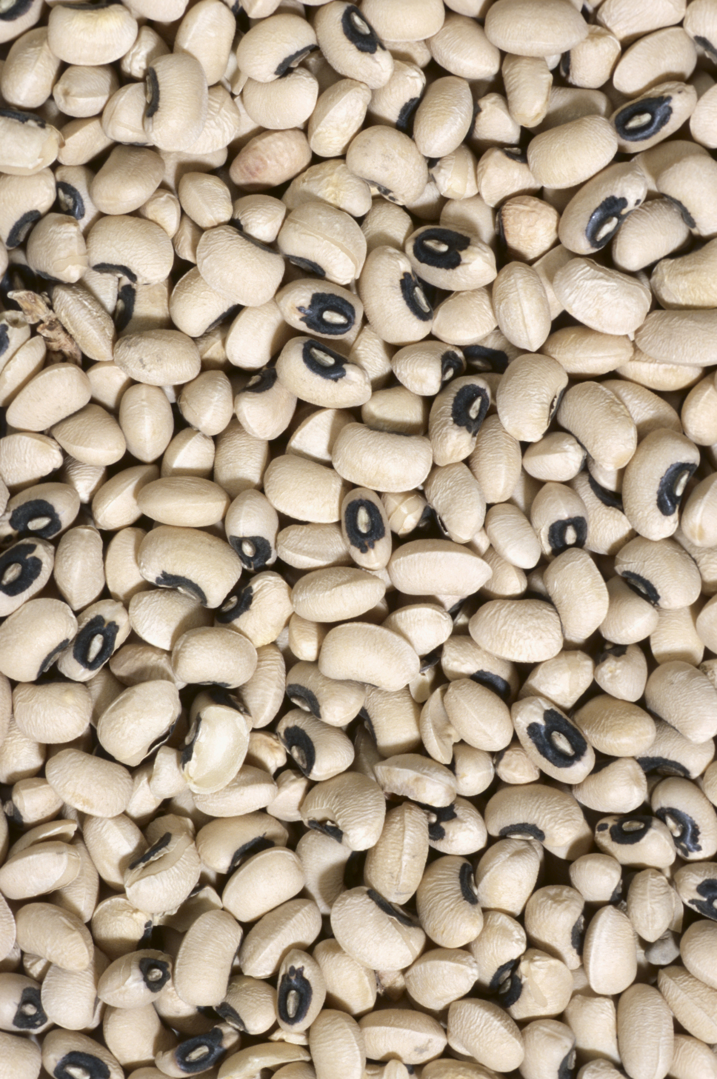 Combining black-eyed peas and rice provides all essential amino acids.