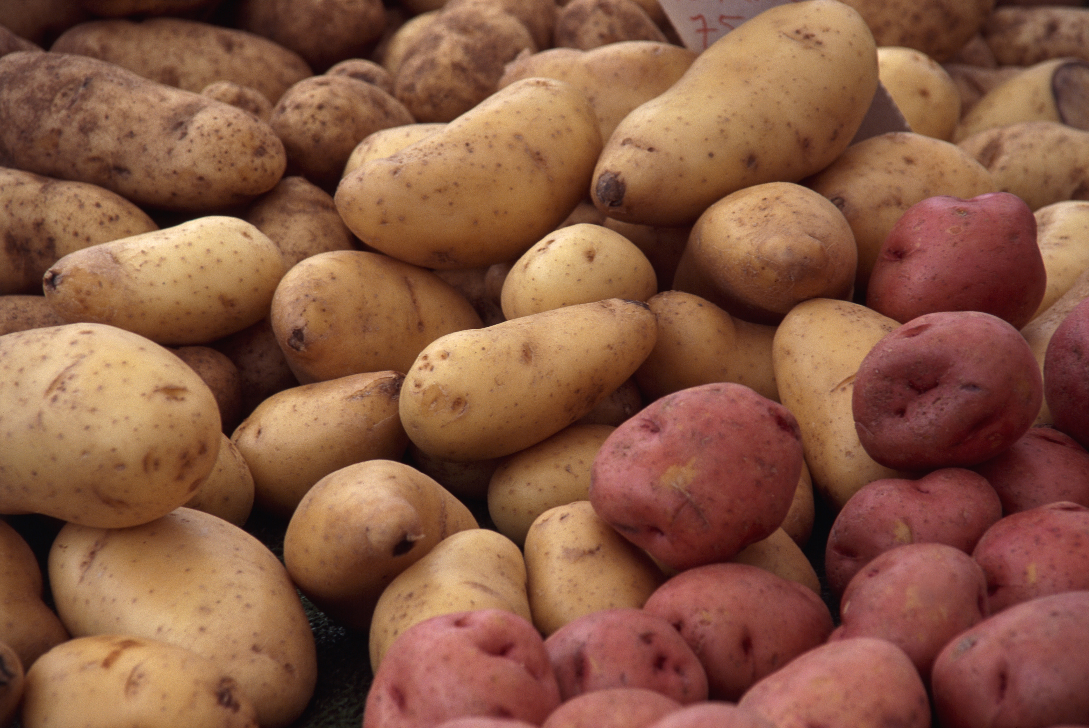 Why Do Potatoes Have a Higher Glycemic Index Than Sugar advise
